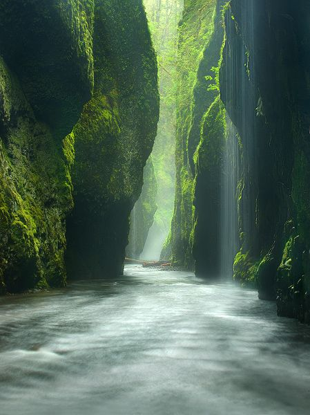 Oneonta Gorge Oregon The Emerald Canyon American Road Trip
